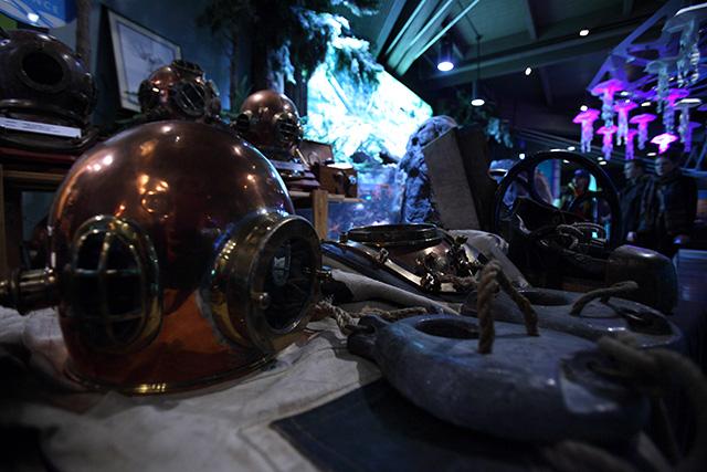 Vancouver Aquarium's 19th Annual Divers' Weekend