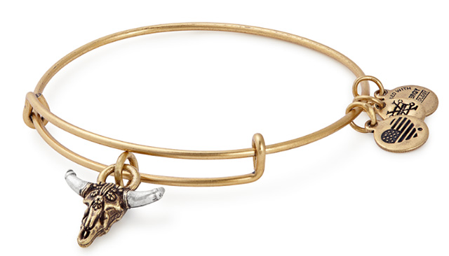 Alex and Ani Skull gold bracelet