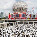 1600 Pandas+ World Tour Comes to Metropolis at Metrotown