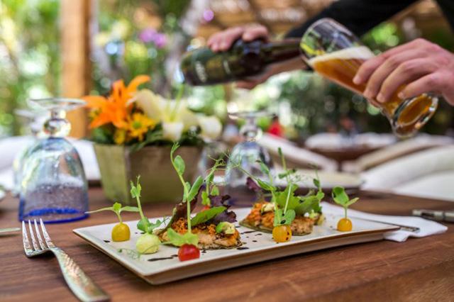 Vallarta-Nayarit Gastronomica