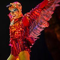 Cirque du Soleil LUZIA Vancouver