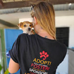 The Global Work & Travel Co. and Rescue PAWS Help Families Adopt a Pet Globally