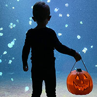 Halloween at Vancouver Aquarium