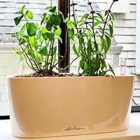 Lechuza Delta 10 planter