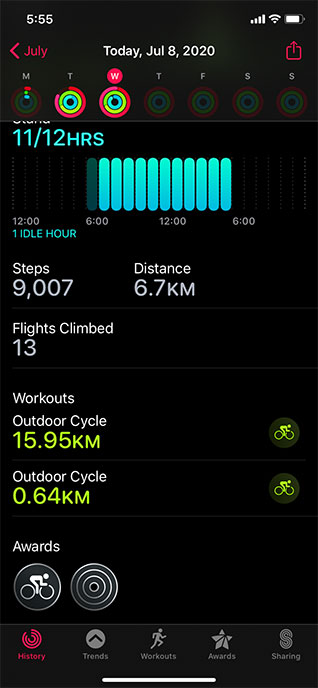 Apple Watch Activity Circles
