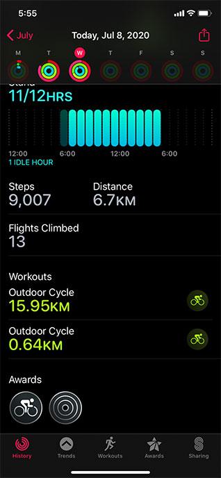 Apple Watch Activity Circles