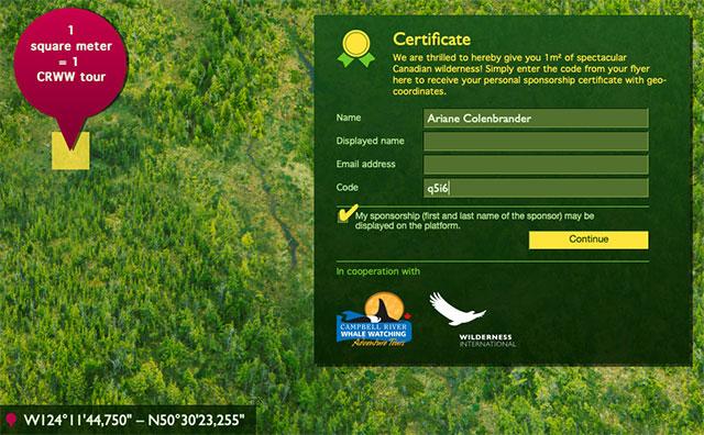Wilderness International Certificate