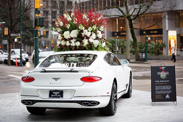Fleurs de Villes Noël