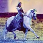 Cavalia's Odysseo: A Visual Stunner Under the White Big Top
