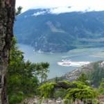 Ocean to Peak Touring with Landsea Tours: Sea to Sky Gondola + Sea Safari Eco Tour