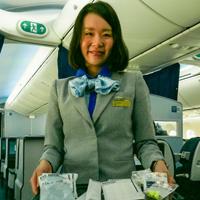 All-Nippon Airways premium economy