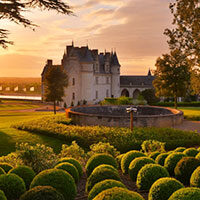 Chateau d'Amboise and gardens