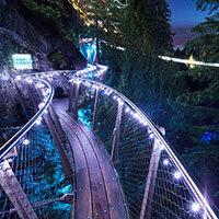 Canyon Lights 2020